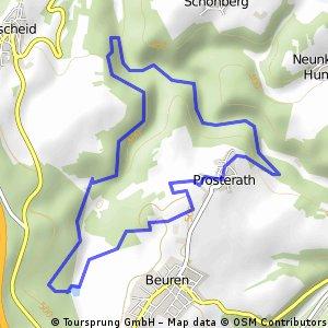 Rockenburger Urwaldpfad