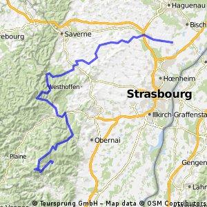 FR Weyersheim - Über Col des Pandours und Champ du Feu nach Le Hohwald
