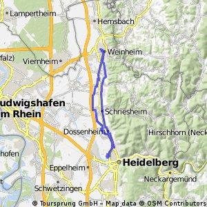 Heidelberge und zurück