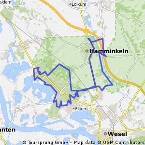 Hamminkeln Waldtour