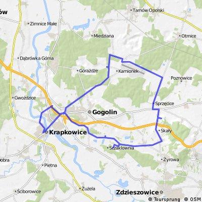 Krapkowice - Kamień Śląski - Oleszka