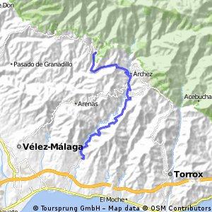Algarrobo - Salares