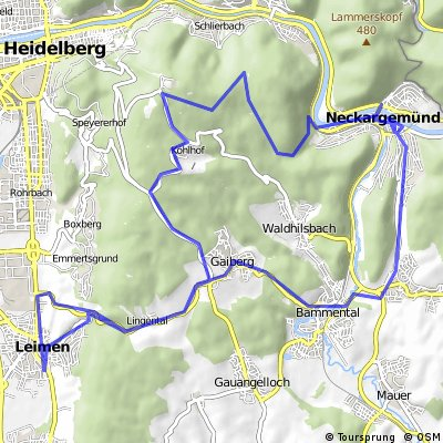 Leimen - Neckargemünd - Leimen