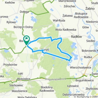 Lasy Radłowskie Wierzchosławice