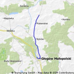 Triathlon głogowski - bike 20km
