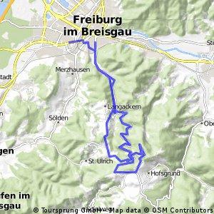 Freiburg - Schauinsland - Gießhübel - Freiburg