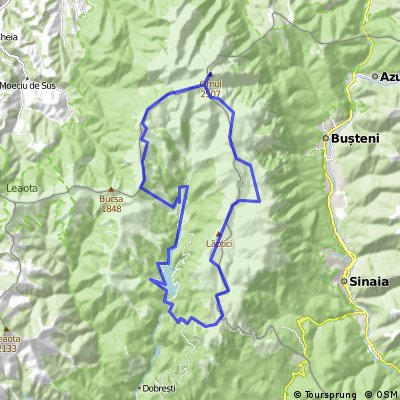 Expeditia Bicicleta Galbena