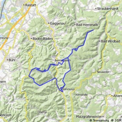 Eyachtal,Hohlohturm,Forbach,Badener Höhe,Hundseck,Raumünzach,Schönmünzach,Hohloturm;Eyachtal