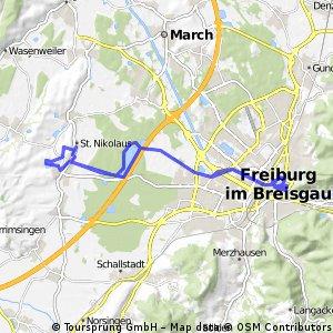 Stadtrunde Freiburg 7.6.15