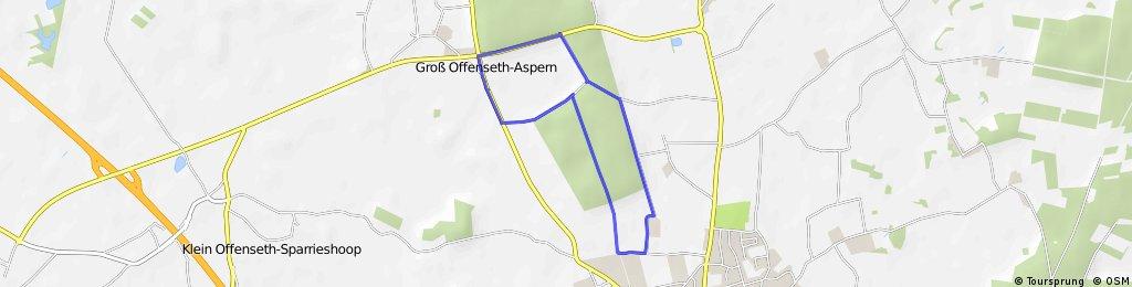 Wald bis Barmstedt