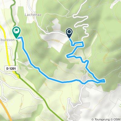 Salève et Mt Sion à VTT - variante 2
