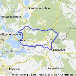 Muldeaue Dübener Heide