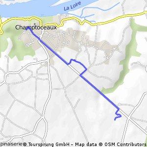 Champtoceaux-Test