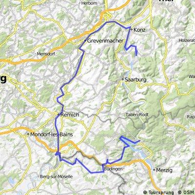 Mosel:  Wiltingen - Mettlach