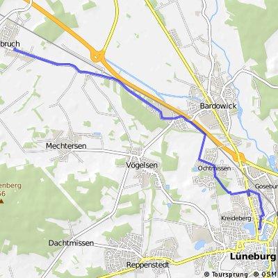 Rueckfahrt von Radbruch nach Lueneburg