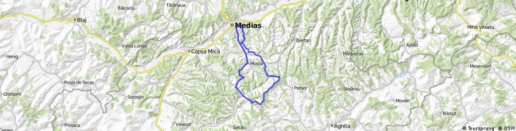 Medias_Binder_Elesteu_Nemsa_HulaPelisor_Metis_Mosna_medias