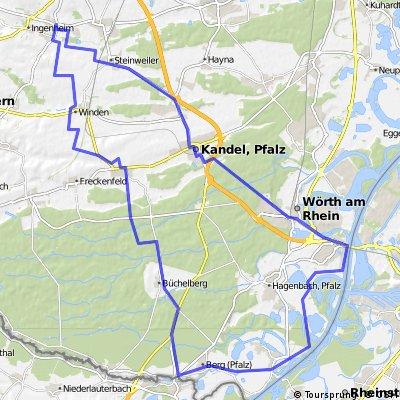 Pfalz-Rheintour
