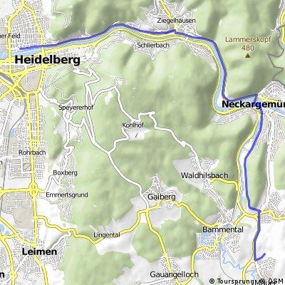 Heidelberg - Mauer (Fundstelle Homo heidelbergensis)