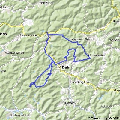 Pfalz Tour 4