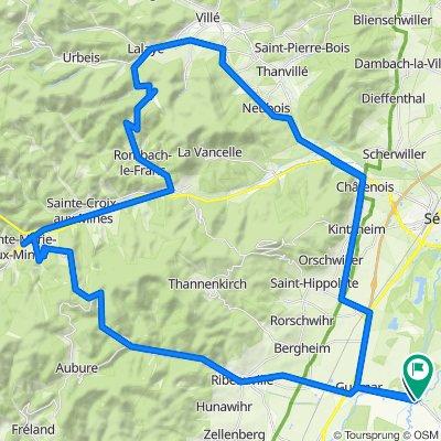 Alsace-Tour 2009-So: FouchyHtRibeauvillé