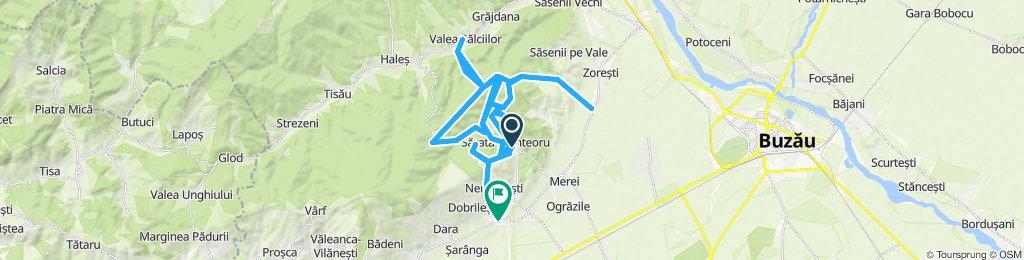 diverse rute neinteresant test