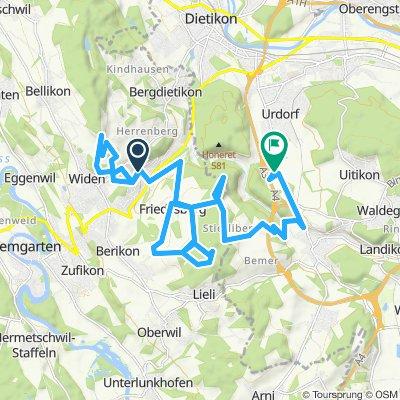 hasenberg-friedlisberg-urdorf