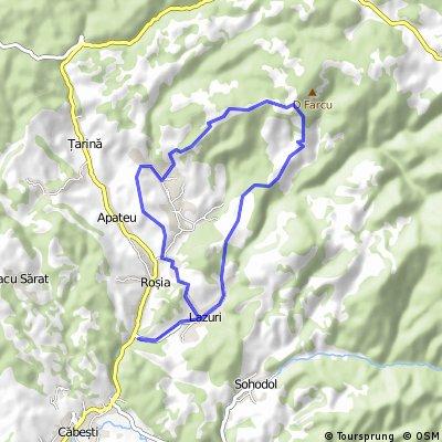 Maraton Padurea Craiului 2015 - hobby