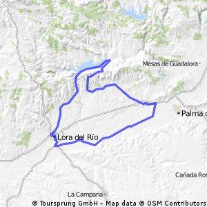 Celta Ruta 3 Sanguino-Calonge