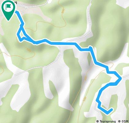 Alergare 10 km la Barzesti