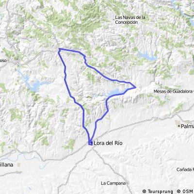 Celta Ruta 7 Constantina-La Puebla-Lora