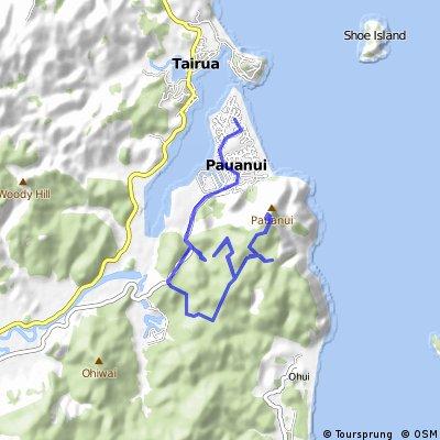 Pauanui Forrest