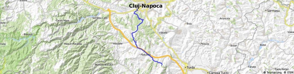 Cluj - Salicea - Ciurila - Cheile Turzii