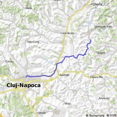 Cluj - Sic stufaris
