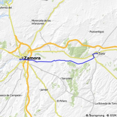 Toro - Zamora
