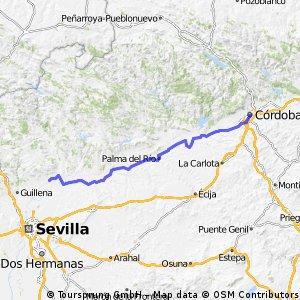19 - Cordoba - Cantillana