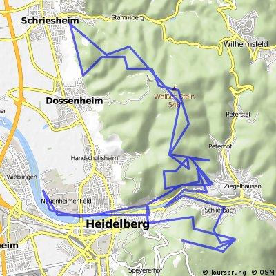 Tour de Heidelberg