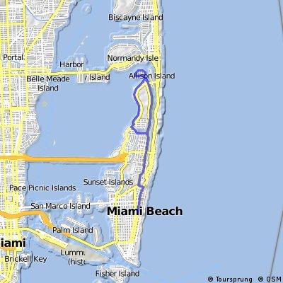 Training Miamia Beach