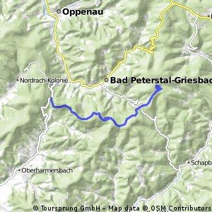 Vom Löcherberg zum Glaswaldsee