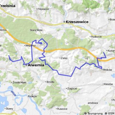Kwaczała/Stare Dworzysko - Dolina Brzoskwinki