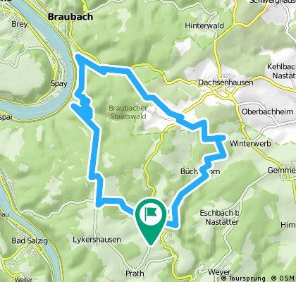 MTB-Dahlheim-Rheinsteig-Braubach-Büchelborn