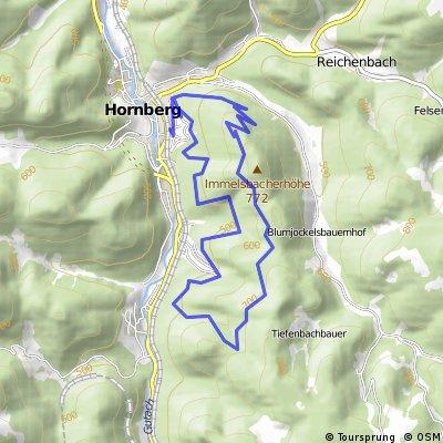 MTB Hornberger Stadtwald