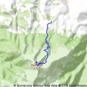 HIKE - Borsa (schit Pietroasa) to Pietrosul Rodnei 2303m