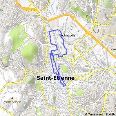 Saint-Etienne - fête du vélo 2014