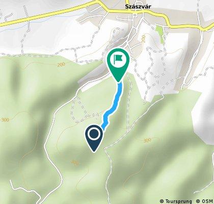 Szászvár Lipse Track