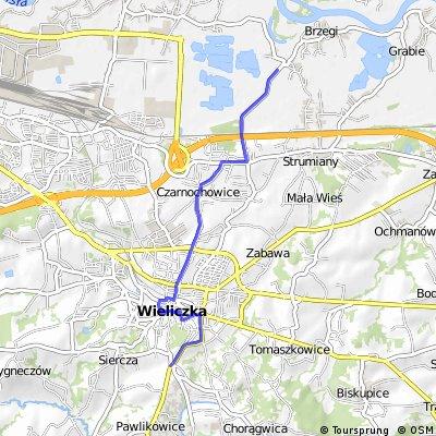 73.5 Wieliczka-Brzegi dojazd na start ostry 9 km