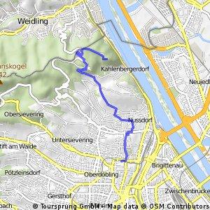 Kahlenberg-Leopoldsberg