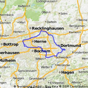 Rheinischer Esel DO