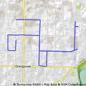Orangevale Trek,  November 28