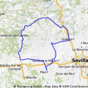 PILAS-BERROCAL-CASTILLO-LAS PAJANOSAS-GENERA-AZNALCOLLAR-PILAS