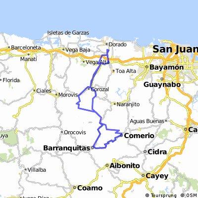 Dorado, Corozal, Comerio, Barranquitas y regreso